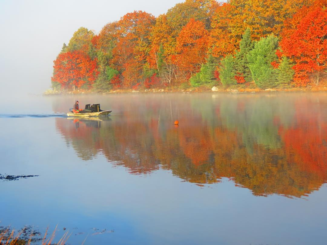 NOAA Fisheries in the Fall